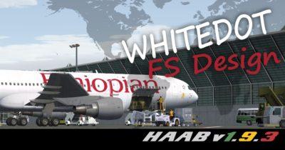 White Dot Simulation Design HAAB Addis Abeba